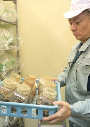 松茸栽培に挑戦する岩田社長