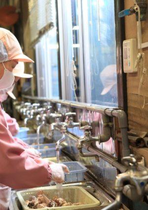 imb,アイエムビー,アガリクス,洗う女性社員,工場